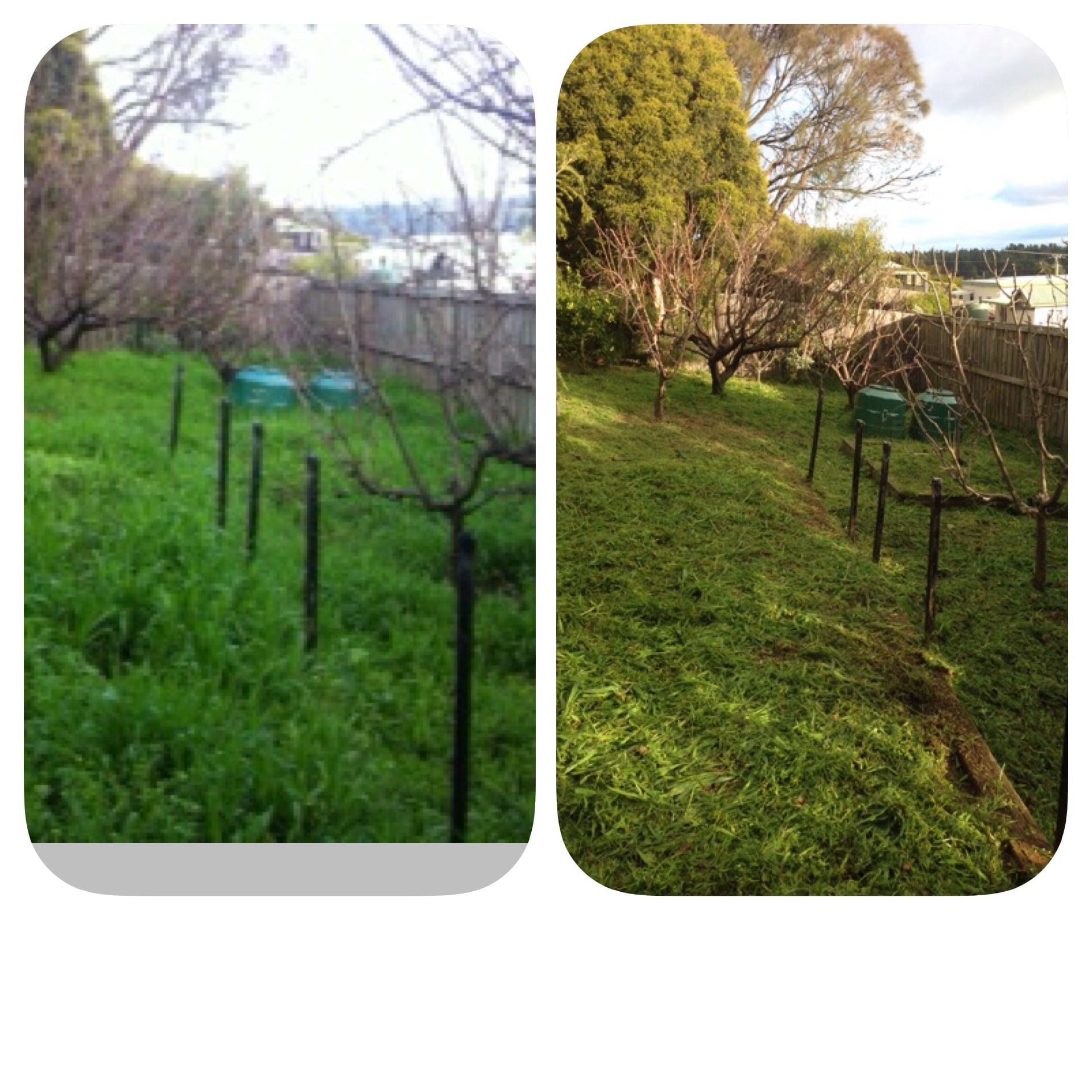 Lawn Mowing Bellerive Lawn Mowing Pro Cut Lawns