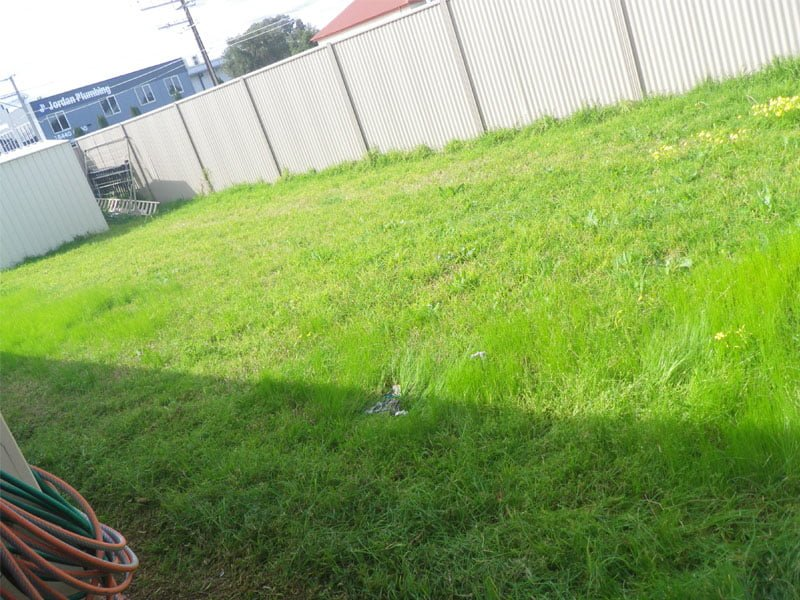 Lawn mowing mile end lawn mowing express lawn mowing for Lawn mowing and gardening services