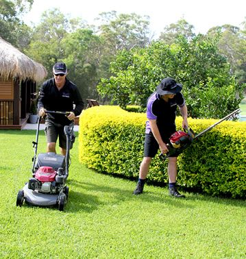 Skills Required Lawn Mowing Franchise