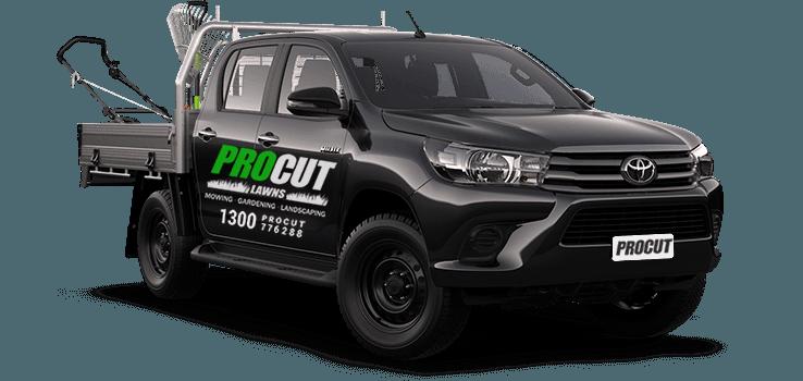 pro cut car