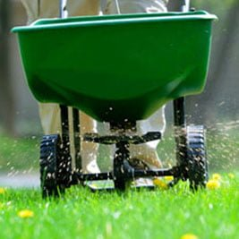 Fertilising & Soil Wetting Treatments