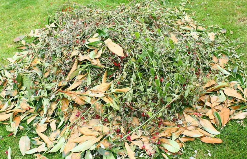 green waste & Rubbish