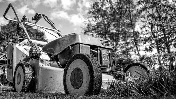 pro cut lawn mowing