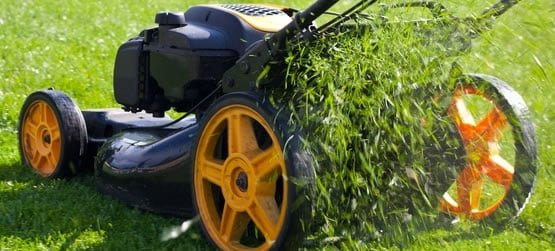 mulch mowing