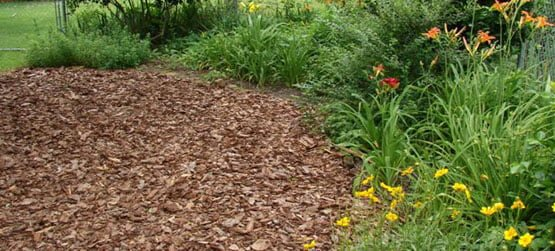 selling your house mulching