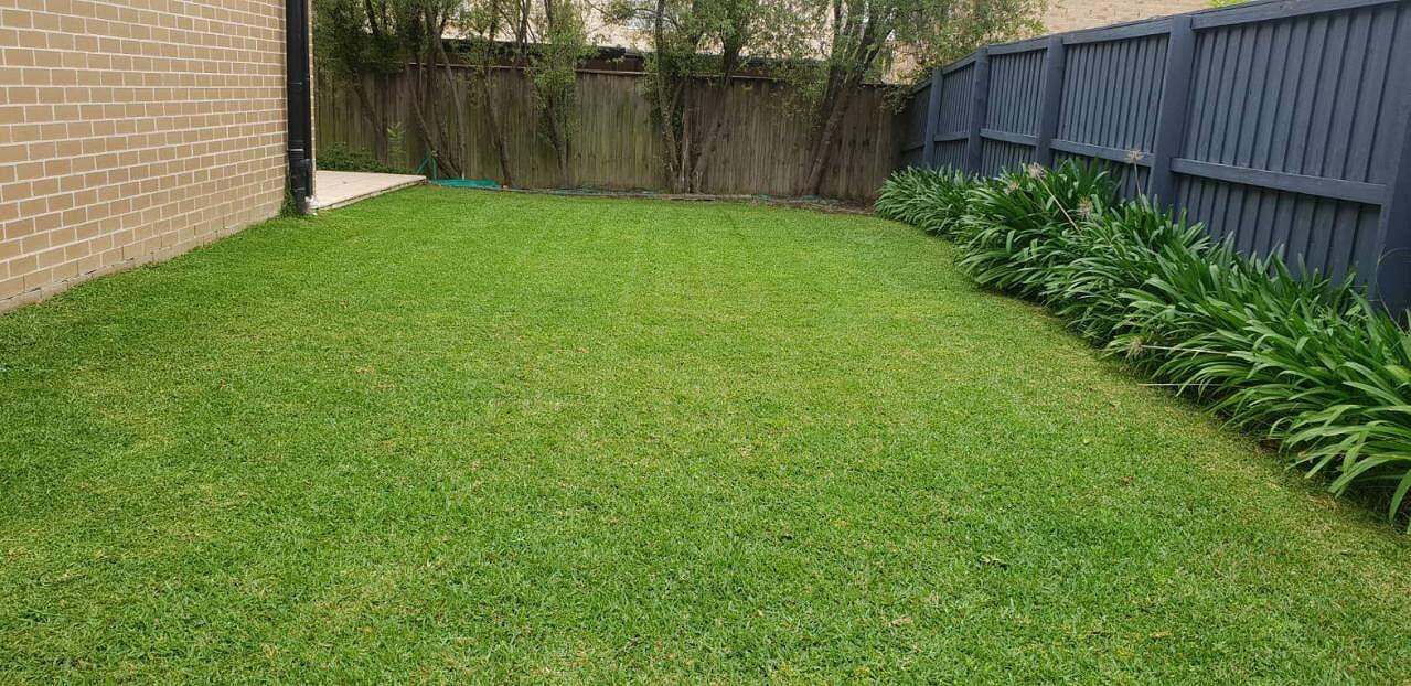 pro cut lawns browns plains 2