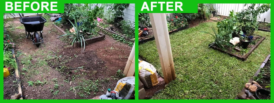 before and after lawn and garden
